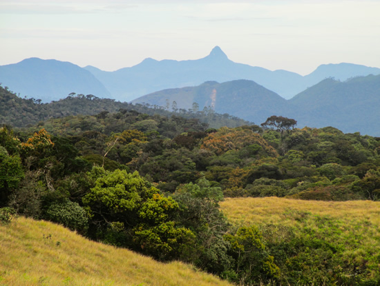Horton Plains - mountains