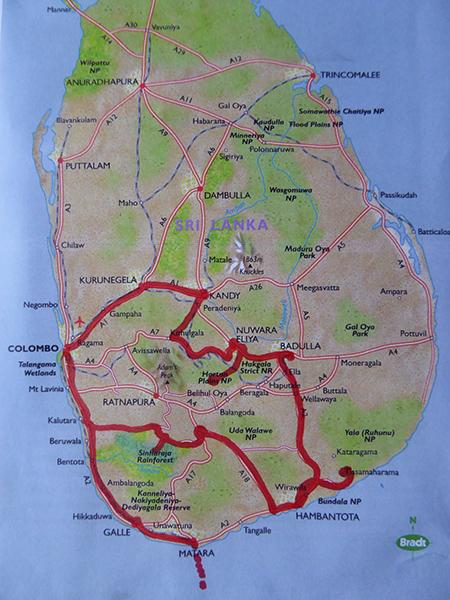 John Speich S Trip Report Sri Lanka Birding Trip Reports
